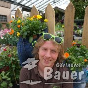 Martin Bauer, Gärtner Meister, Chef