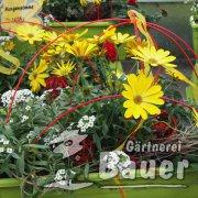 Tag der offenen Gärtnerei 2015
