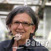 Theresia Gerner, Aushilfe